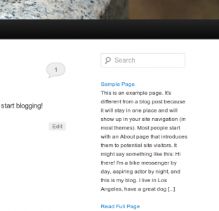 WordPress Page Excerpt Widget