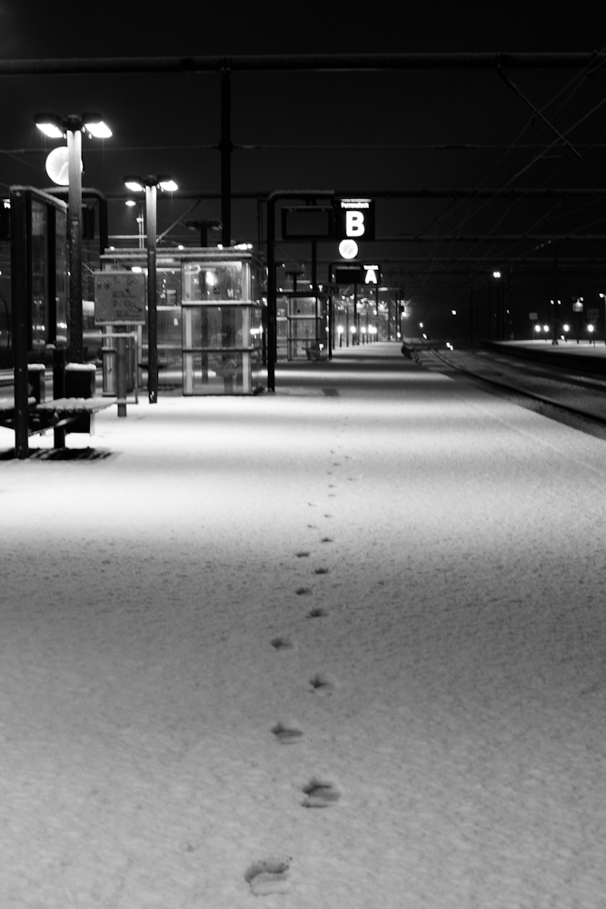 first_snow_odense_december_2012 (6 of 6)