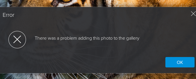 Flickr Galleries: There was a problem adding this photo to the gallery